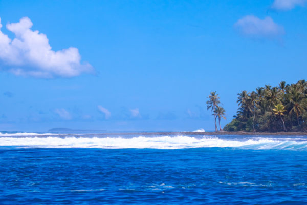 Bankvault-mentawai-surf-sabbit3