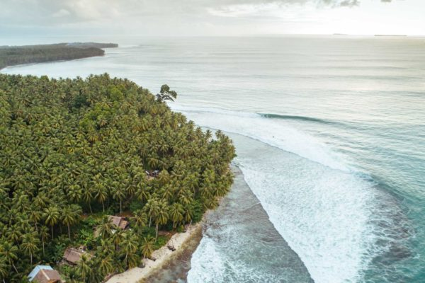 Sabbit-mentawai-surfcamp32