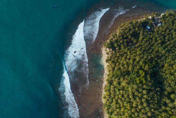Mentawai surf @Molimc