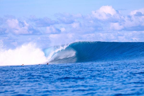 surfcamp-mentawai-sabbit